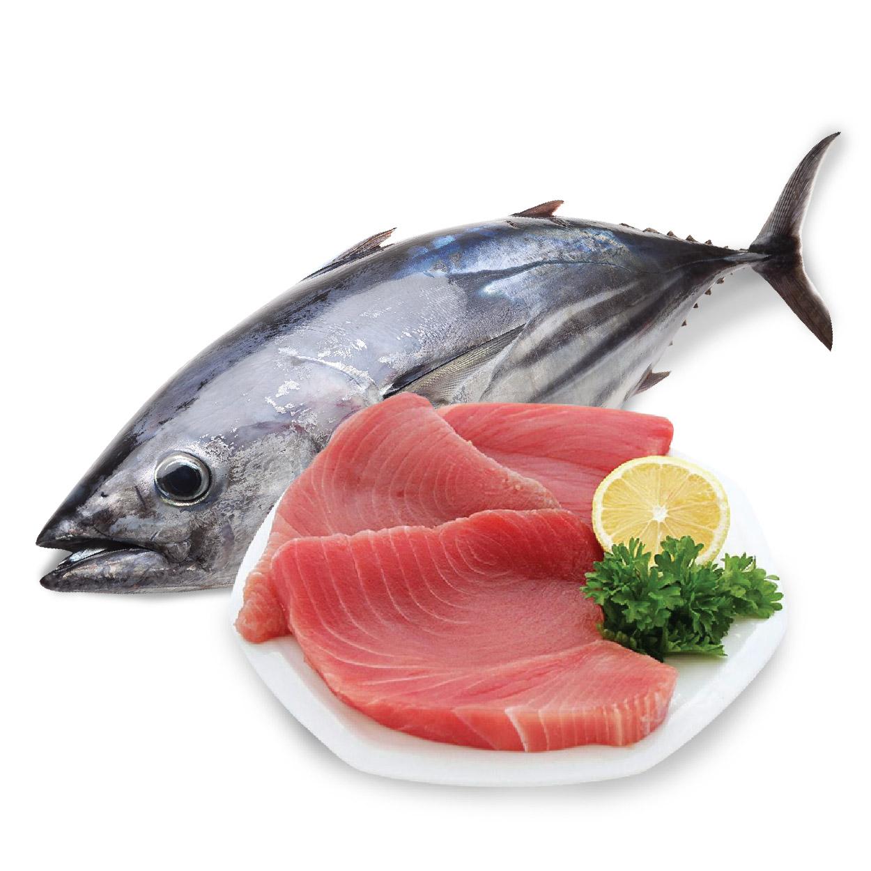 Vì sao cá tốt cho người bị bệnh khớp 1