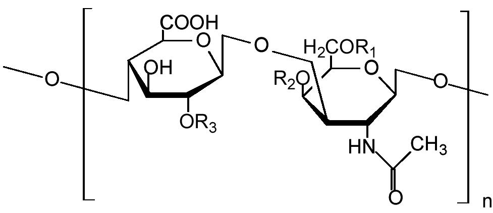 Đôi nét về Nano chondrodine là gì? 1
